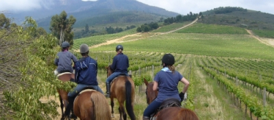 Cape Town Horse Riding